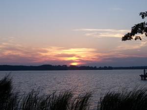 Lake Sunset Grass