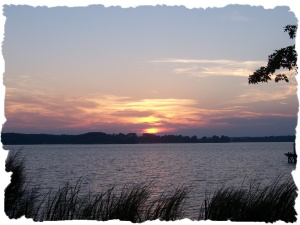 Lake Sunset Grass (2)